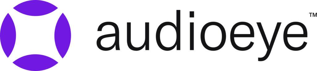 audioeye-review